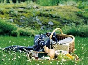 892-piknik
